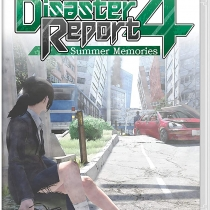 12-disaster-report-4